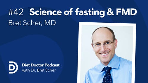 Diet Doctor Podcast #42 with Bret Scher