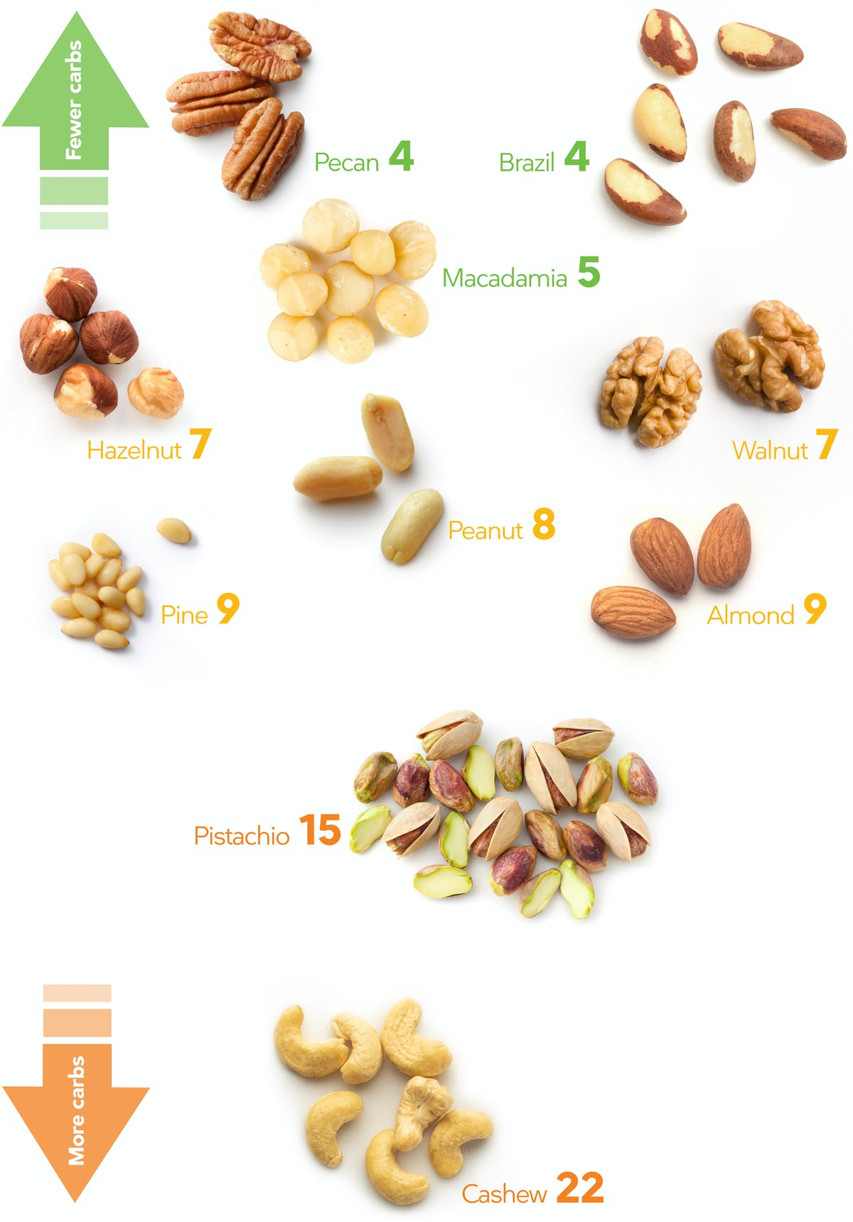 Keto Nuts – a Visual Guide to the Best