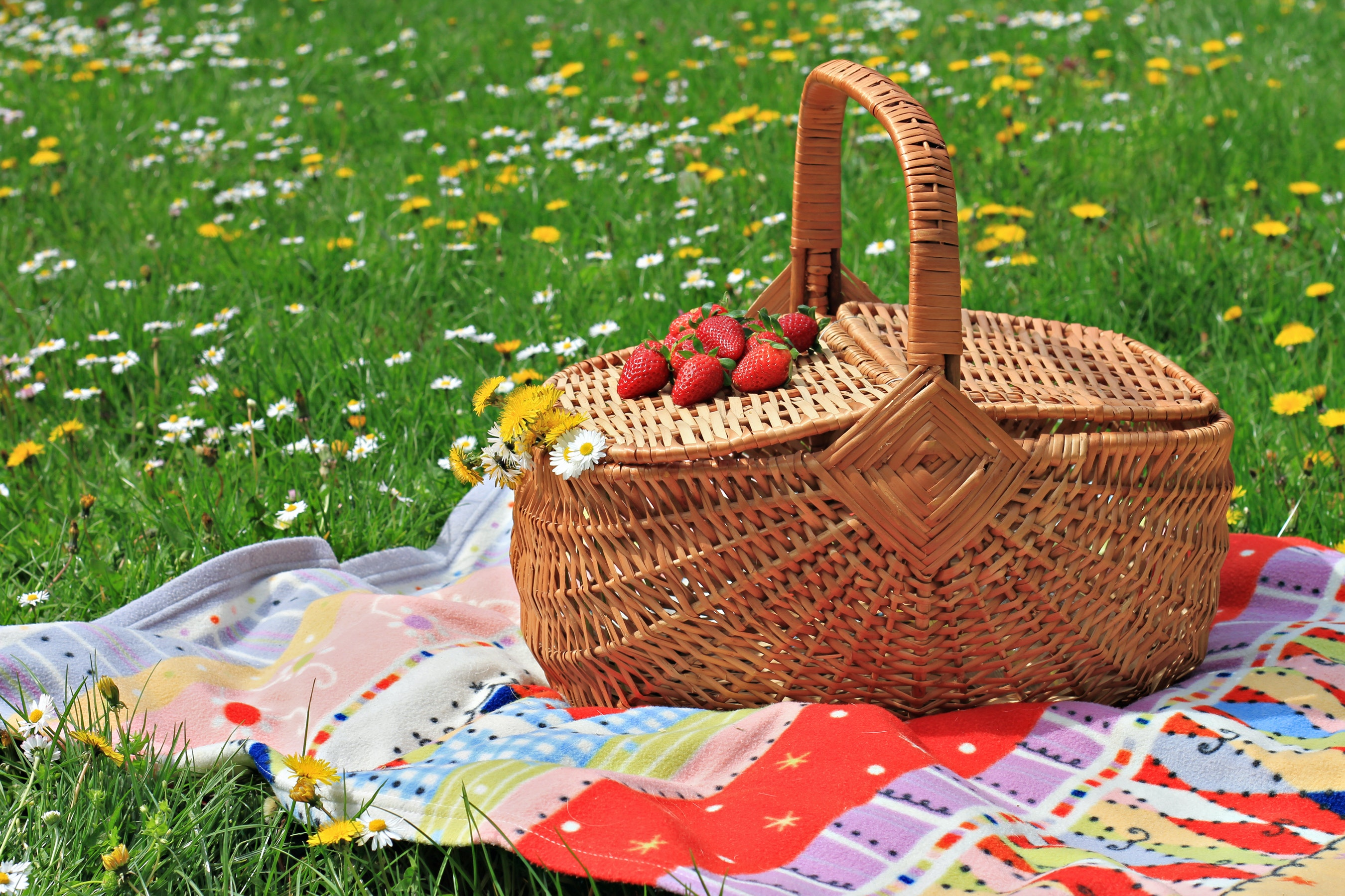 Low Carb And Keto Recipes For The Perfect Picnic Diet Doctor