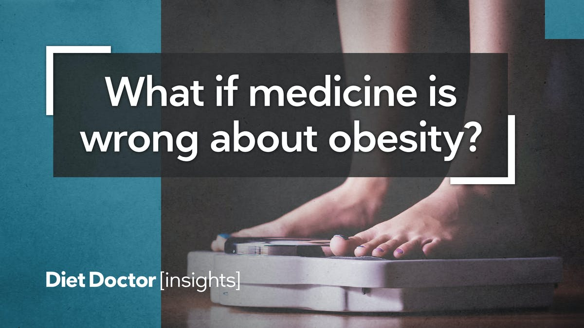 Insights: What if medicine is wrong about obesity?