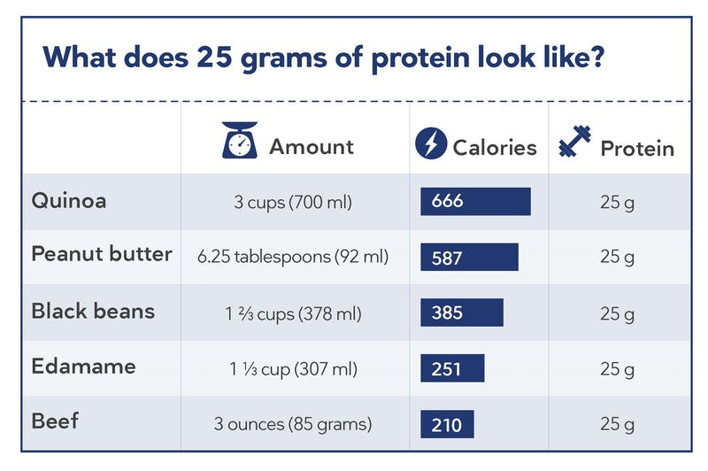 protein and calories from animal and plant foods