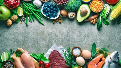 Plant protein vs. animal protein: Which one is healthier for you?