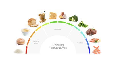 High-protein diet: What it is and how to do it