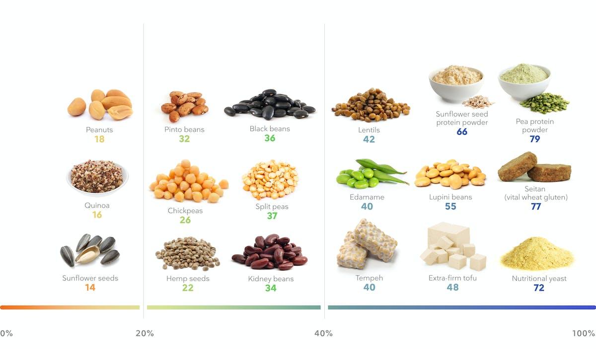 _Desktop – Plant protein foods