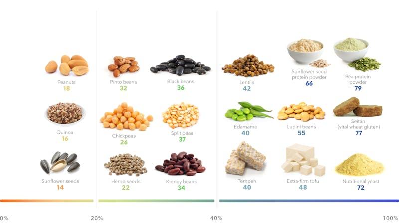 _Desktop - Plant protein foods
