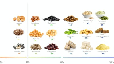The best plant-based high-protein foods