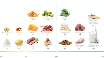 The best high-protein foods for weight loss