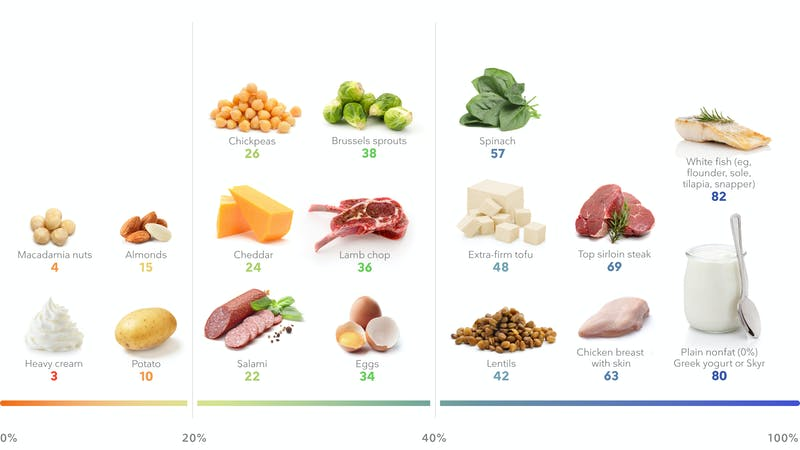 Desktop - The best high-protein foods for weight loss_