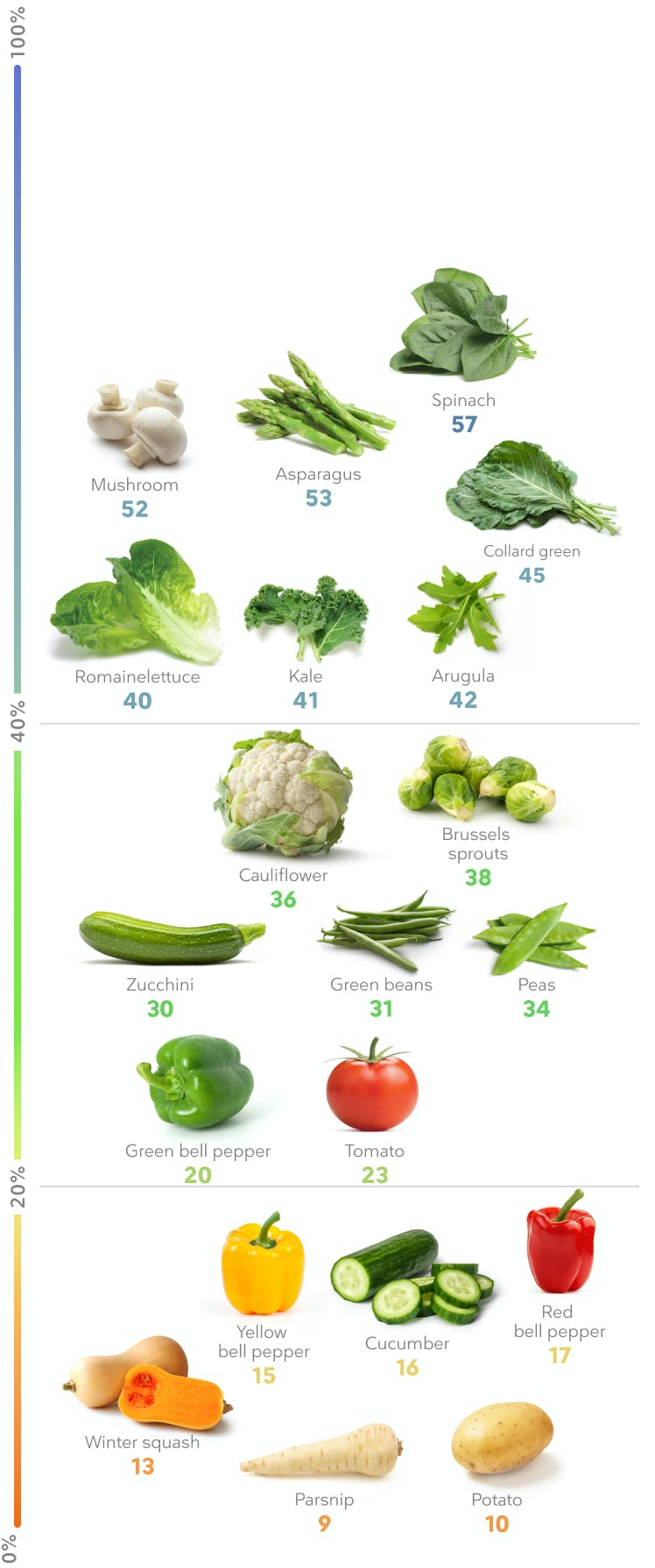 Best High-protein Vegetables Weight Loss